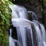 2013年夏のするっと関西3Dayチケット2日目「赤目四十八滝散策(赤目五瀑)」ぶらり旅