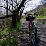 春の青春18きっぷ企画2014年第4回「香川県女木島桜巡り散策」ぶらり旅