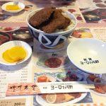 福井名物ソースカツ丼を巡って琵琶湖一周ぶらり旅