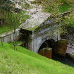 湖都から古都へ水の路「琵琶湖疏水」と「桜」散策ぶらり旅