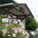 GW大型連休は愛媛の松山へ散策ぶらり旅 二日目