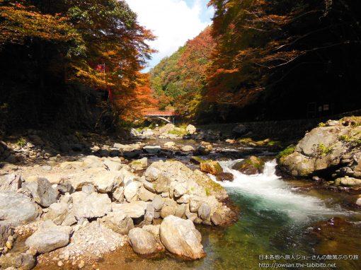 2012-11-07 京都府_清滝