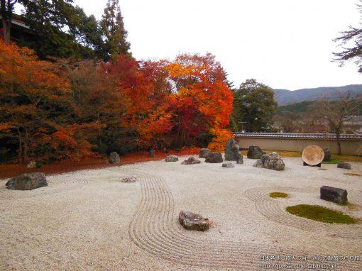 2012-12-02 京都府_実相院「紅葉」