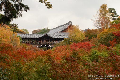 2014-11-12 京都府_東福寺「紅葉」