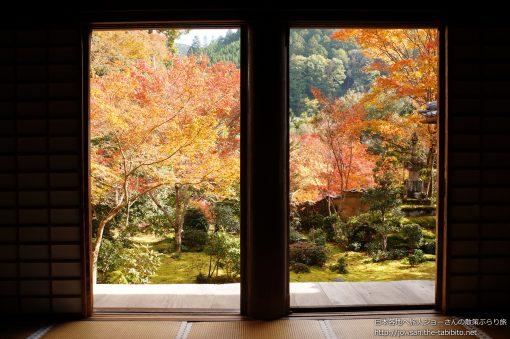 2014-11-16 京都府_西明寺「紅葉」