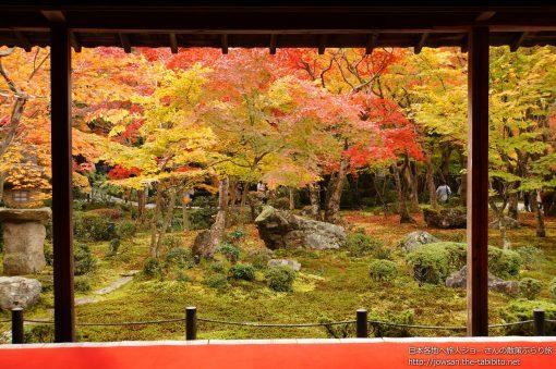2014-11-19 京都府_圓光寺「紅葉」