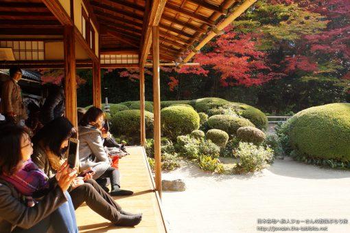 2014-11-19 京都府_詩仙堂「紅葉」