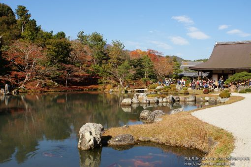2014-11-30 京都府_嵐山天龍寺「紅葉」