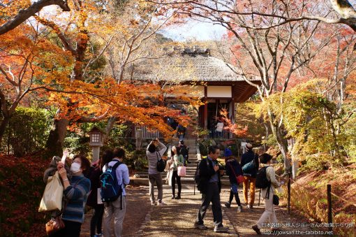 2014-11-30 京都府_常寂光院「紅葉」