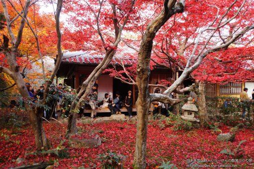 2014-11-30 京都府_厭離庵「紅葉」