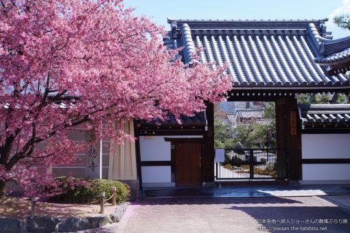 2015-03-25 京都府_長徳寺「桜」