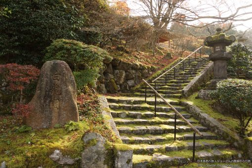 2015-11-29 京都府_白龍園