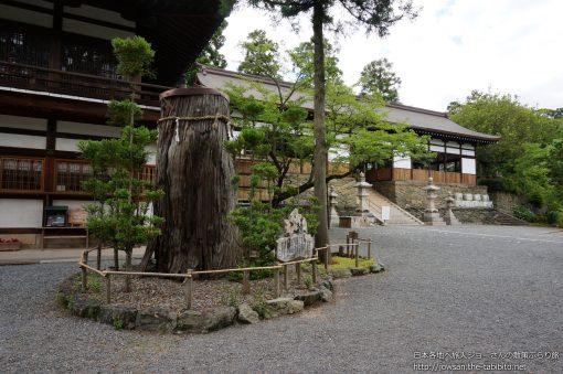 2013-06-12 和歌山県_伊太祁曽神社