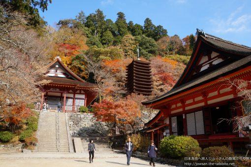 2013-12-01 奈良県_談山神社「紅葉」