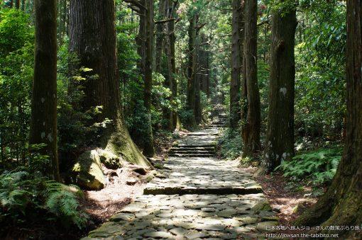 2014-06-29 和歌山県_大門坂