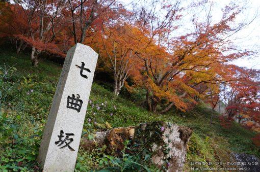 2014-11-23 奈良県_七曲坂