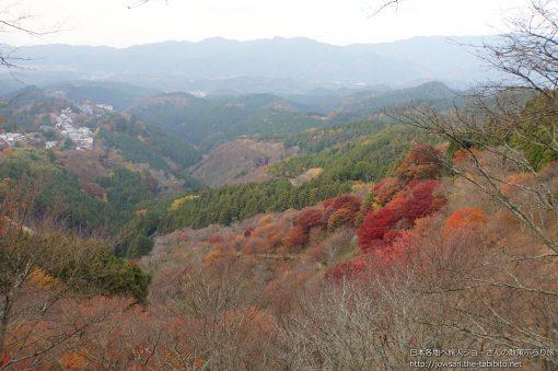 2014-11-23 奈良県_中千本公園「紅葉」