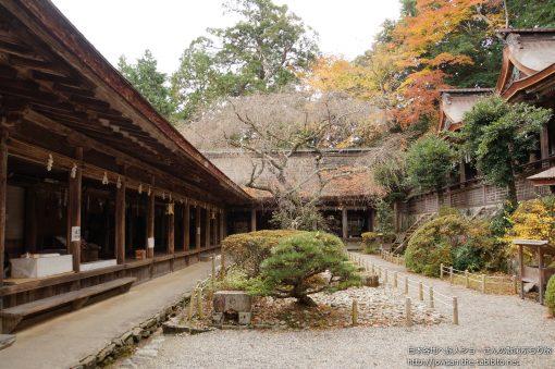 2014-11-23 奈良県_吉野水分神社「紅葉」
