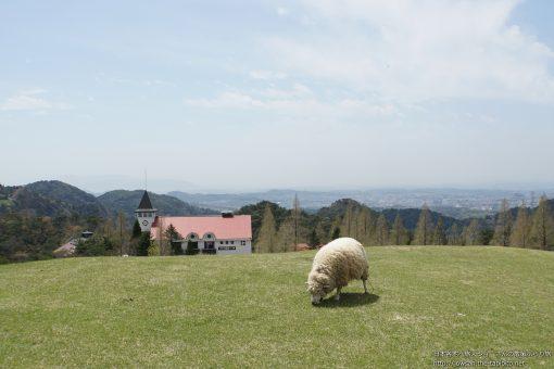 2015-04-22 兵庫県_六甲山牧場