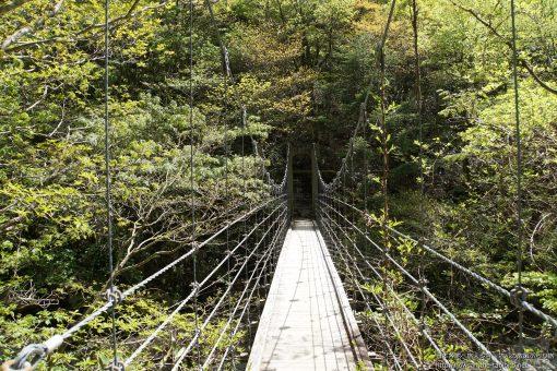 2015-05-20 奈良県_シオカラ谷吊り橋