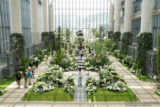 2015-05-31 兵庫県_淡路夢舞台「奇跡の星の植物館」