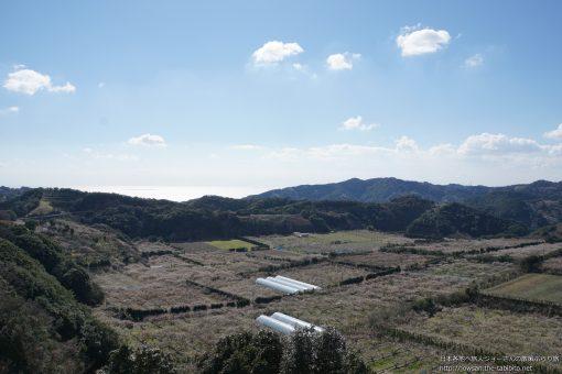 2016-02-17 和歌山県_岩代大梅林