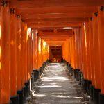 京都伏見稲荷大社の千本鳥居散策ぶらり旅