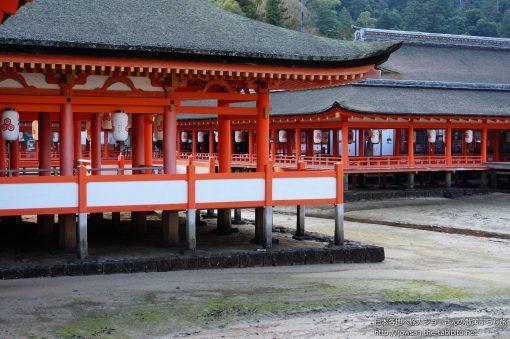 2014-01-05 広島県_厳島神社
