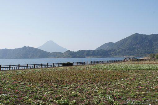 2016-03-20 鹿児島県_池田湖
