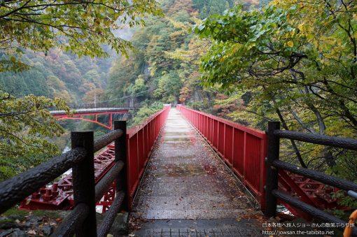 富山県_やまびこ遊歩道