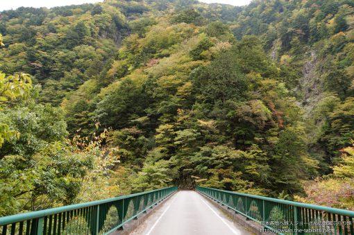 2014-10-26 静岡県_飛龍橋