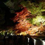 仕事帰りに京都の禅林寺 永観堂のライトアップを見に散策ぶらり旅
