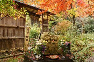 2016年度版!秋の紅葉狩りスポットの見どころ!総まとめ特集
