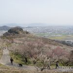 春の関西1デイパスを使って兵庫県たつの市の綾部山梅林へ散策ぶらり旅