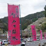 700年の時を刻む県下有数の梅の里・賀名生梅林へ散策ぶらり旅