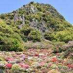 西日本制覇まであと2県。佐賀県の武雄温泉の御船山楽園へツツジを見に散策ぶらり旅