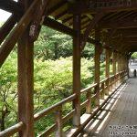 3年ぶりに東福寺へ新緑もみじを狩りに散策ぶらり旅