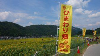 2013年夏の青春18切符企画第1回「兵庫県佐用町ひまわり祭り」ぶらり旅