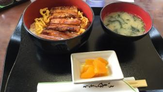 世界文化遺産の姫路城と好古園散策ぶらり旅
