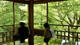 春の2ヶ月間だけの特別拝観。青紅葉が美しすぎる「瑠璃光院」へ散策ぶらり旅